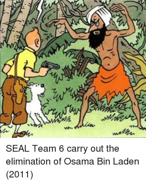 Osama Bin Laden, Seal, and Bin Laden: SEAL Team 6 carry out the elimination of Osama Bin Laden (2011)