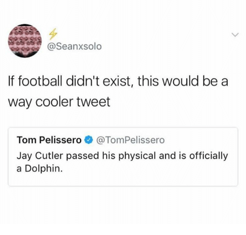 Football, Jay, and Jay Cutler: @Seanxsolo  If football didn't exist, this would be a  way cooler tweet  Tom Pelissero e》 @TomPelissero  Jay Cutler passed his physical and is officially  a Dolphin.