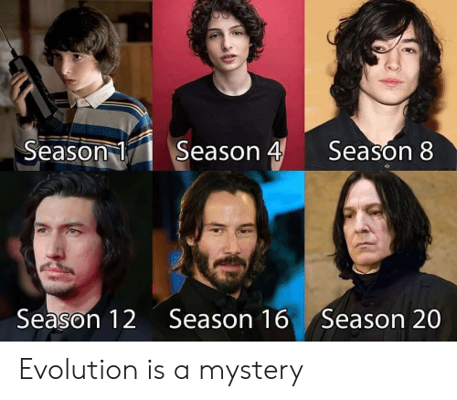 Evolution, Mystery, and  Season 1: Season 4  Season 1  Season 8  Season 12  Season 16  Season 20 Evolution is a mystery