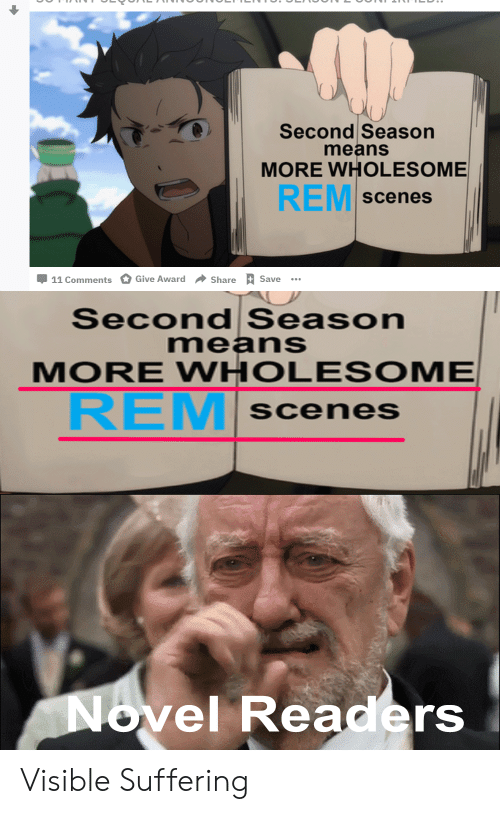 Anime, Wholesome, and Suffering: Second Seasorn  means  MORE WHOLESOME  REM  scenes  11 Comments O Give Award  + Share RSave  Second Season  means  MORE WHOLESOME  REM  scenes  ovel Readers Visible Suffering