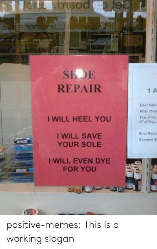 Memes, Tumblr, and Blog: SEDE  REPAIR  1 A  Dear Valua  After 35 ye  This shop  3's of May ;  I WILL HEEL YOU  I WILL SAVE  YOUR SOLE  Kind Rega  Georges Si  I WILL EVEN DYE  FOR YOU positive-memes:  This is a working slogan