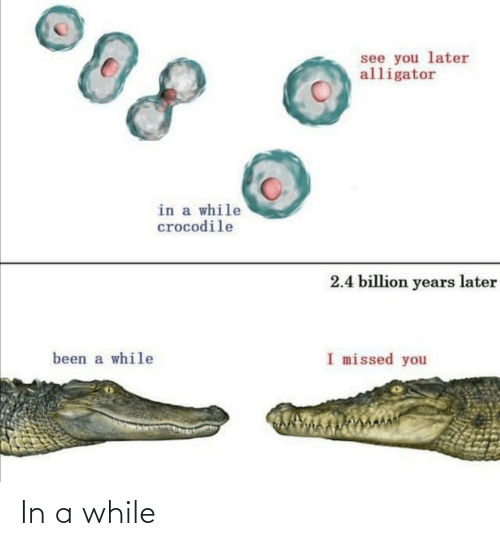 missed: see you later  alligator  in a while  crocodile  2.4 billion years later  I missed you  been a while In a while