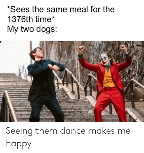 Dogs, Happy, and Time: *Sees the same meal for the  1376th time*  My two dogs:  an Seeing them dance makes me happy