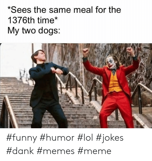 Dank, Dogs, and Funny: *Sees the same meal for the  1376th time*  My two dogs: #funny #humor #lol #jokes #dank #memes #meme