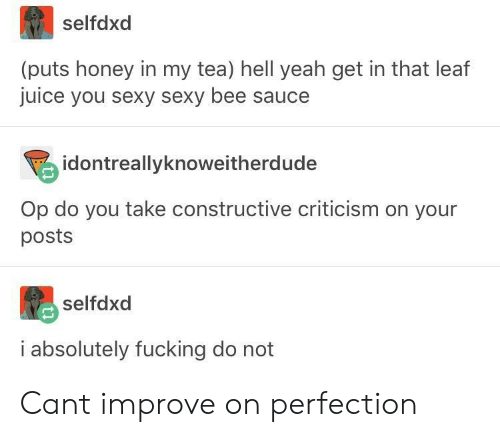 You Sexy: selfdxd  (puts honey in my tea) hell yeah get in that leaf  juice you sexy sexy bee sauce  idontreallyknoweitherdude  Op do you take constructive criticism on your  posts  selfdxd  i absolutely fucking do not Cant improve on perfection