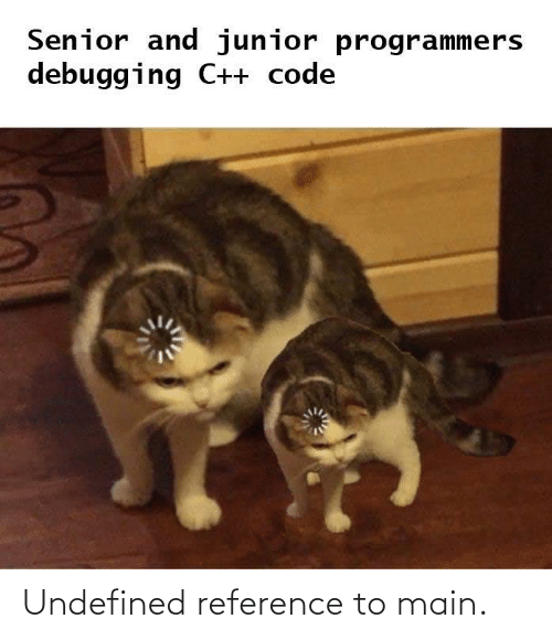 Main: Senior and junior programmers  debugging C++ code Undefined reference to main.