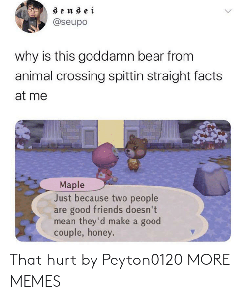 Bear: sensei  @seupo  why is this goddamn bear from  animal crossing spittin straight facts  at me  Maple  Just because two people  are good friends doesn't  mean they'd make a good  couple, honey. That hurt by Peyton0120 MORE MEMES