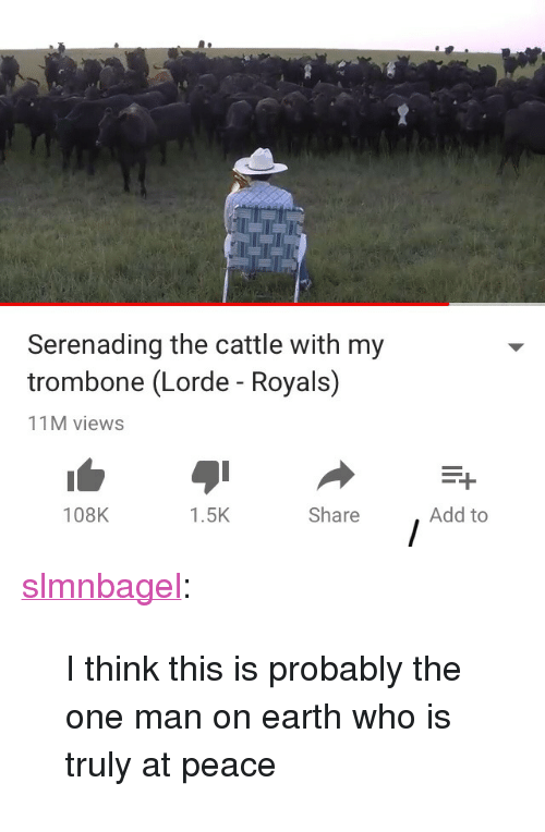 "Lorde: Serenading the cattle with my  trombone (Lorde - Royals)  11M views  108K  1.5K  Share  Add to <p><a href=""http://slmnbagel.tumblr.com/post/172658322785/i-think-this-is-probably-the-one-man-on-earth-who"" class=""tumblr_blog"" target=""_blank"">slmnbagel</a>:</p> <blockquote><p>I think this is probably the one man on earth who is truly at peace</p></blockquote>"