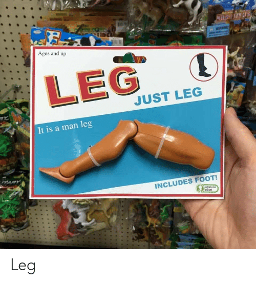 Foot, Man, and Just: SERIVECIER  Ages and up  LEG  JUST LEG  It is a man leg  TARY  INCLUDES FOOT!  obvious  plant Leg