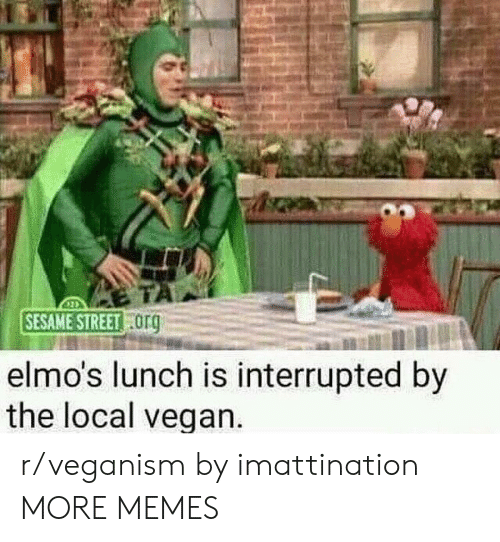 Dank, Memes, and Sesame Street: SESAME STREET  org  elmo's lunch is interrupted by  the local vegan r/veganism by imattination MORE MEMES