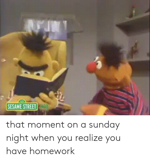 Sesame Street, Homework, and Sunday: SESAME STREET that moment on a sunday night when you realize you have homework