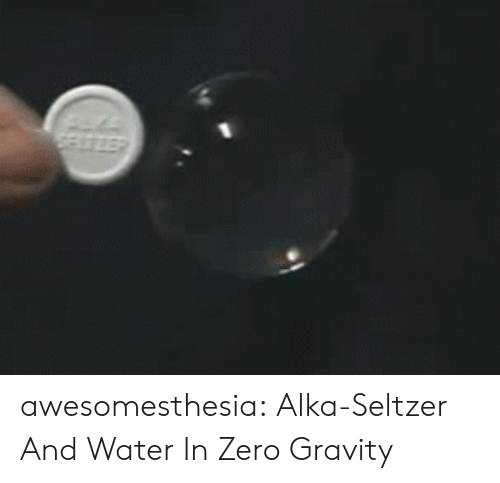 Tumblr, Zero, and Blog: SESTIEP awesomesthesia:  Alka-Seltzer And Water In Zero Gravity