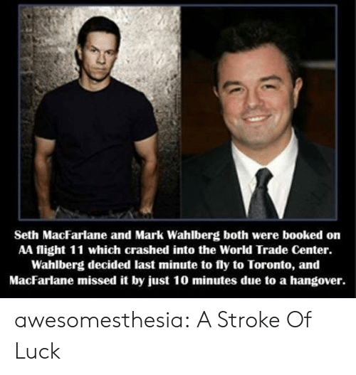 Seth MacFarlane, Tumblr, and Mark Wahlberg: Seth MacFarlane and Mark Wahlberg both were booked on  AA flight 11 which crashed into the World Trade Center.  Wahlberg decided last minute to fly to Toronto, and  MacFarlane missed it by just 10 minutes due to a hangover. awesomesthesia:  A Stroke Of Luck