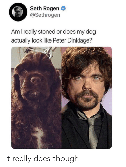 I Really: Seth Rogen  @Sethrogen  Am I really stoned or does my dog  actually look like Peter Dinklage? It really does though