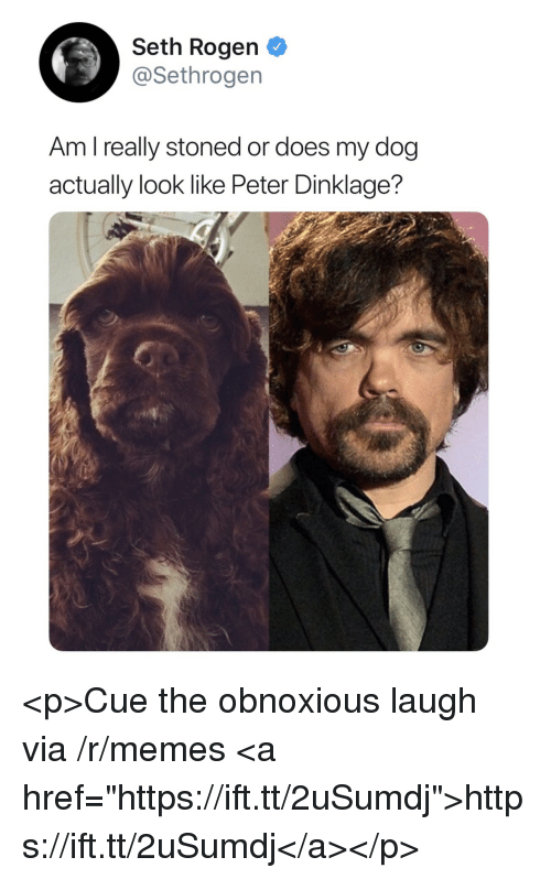 "Memes, Seth Rogen, and Peter Dinklage: Seth Rogen  @Sethrogen  Am l really stoned or does my dog  actually look like Peter Dinklage? <p>Cue the obnoxious laugh via /r/memes <a href=""https://ift.tt/2uSumdj"">https://ift.tt/2uSumdj</a></p>"