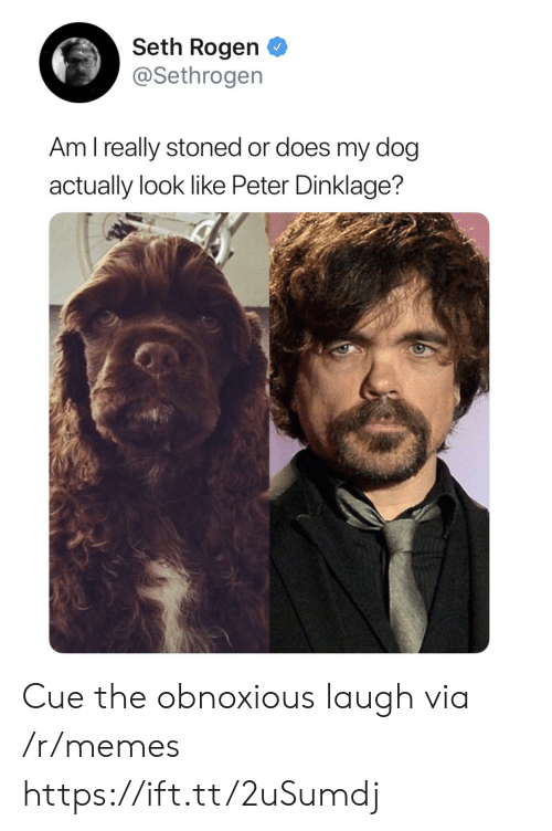 Memes, Seth Rogen, and Peter Dinklage: Seth Rogen  @Sethrogen  Am l really stoned or does my dog  actually look like Peter Dinklage? Cue the obnoxious laugh via /r/memes https://ift.tt/2uSumdj