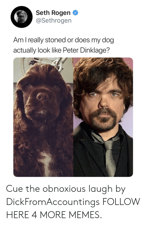 Dank, Memes, and Seth Rogen: Seth Rogen  @Sethrogen  Am l really stoned or does my dog  actually look like Peter Dinklage? Cue the obnoxious laugh by DickFromAccountings FOLLOW HERE 4 MORE MEMES.
