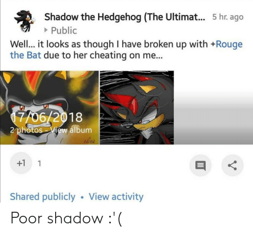 Cheating, Hedgehog, and Her: Shadow the Hedgehog (The Ultima... 5 hr. ago  Public  Well... it looks as though I have broken up with +Rouge  the Bat due to her cheating on me...  7706/2018  2 photos View album  elina  +1 1  Shared publiclyView activity Poor shadow :'(
