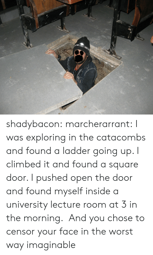 Open The Door: shadybacon: marcherarrant: I was exploring in the catacombs and found a ladder going up. I climbed it and found a square door. I pushed open the door and found myself inside a university lecture room at 3 in the morning.   And you chose to censor your face in the worst way imaginable