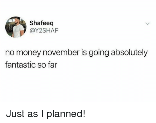 Memes, Money, and 🤖: Shafeeq  @Y2SHAF  no money november is going absolutely  fantastic so fan Just as I planned!