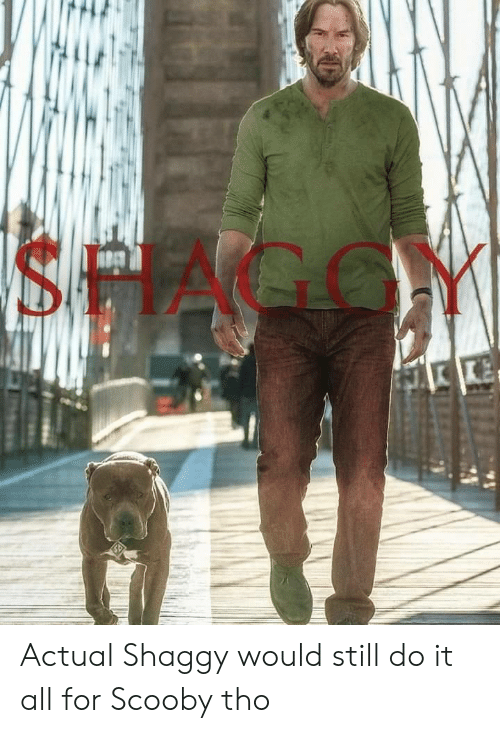 Shaggy, Scooby, and All: SHAGGY Actual Shaggy would still do it all for Scooby tho