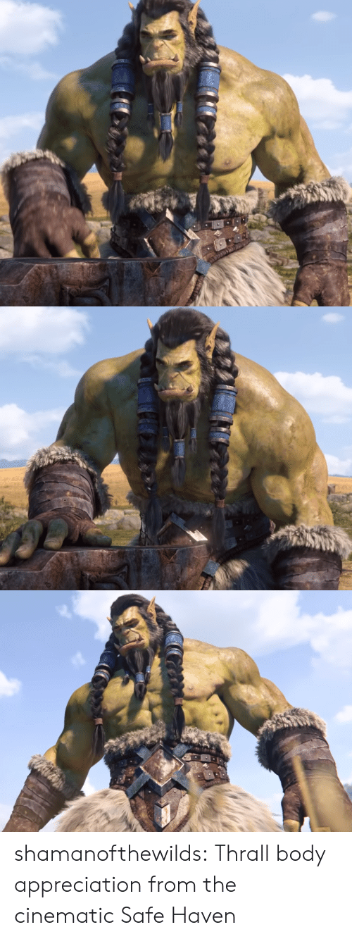 Tumblr, Blog, and Haven: shamanofthewilds:  Thrall body appreciation from the cinematic Safe Haven