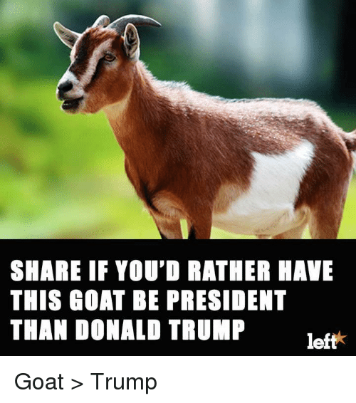 Donald Trump, Memes, and Goat: SHARE IF YOU'D RATHER HAVE  THIS GOAT BE PRESIDENT  THAN DONALD TRUMP  left Goat > Trump