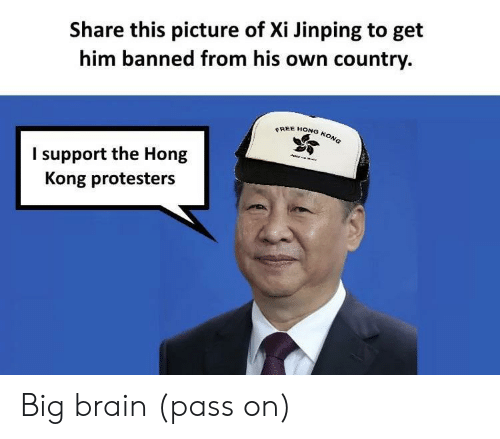 Brain, Free, and Hong Kong: Share this picture of Xi Jinping to get  him banned from his own country.  FREE HONG KONG  I support the Hong  Kong protesters  nemt Big brain (pass on)
