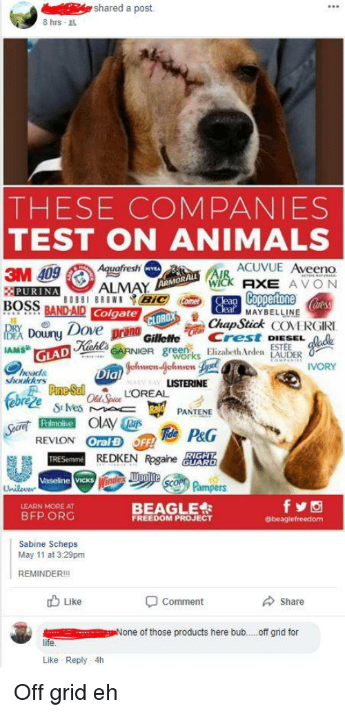 Animals, Avon, and Facepalm: shared a post.  8 hrs  THESE COMPANIES  TEST ON ANIMALS  3M 409Auefresh  BOSSBANDA D azme@-.uay. MAY BELONERGİRI  ACUVUE Aveeno  WICk AXE AVON  ARMORALL  PURINAALMAY  ares  MAYBELLINE  CLOROX  ChapStick COVERGIRI  GilleffeCrestode  ove  DEA Douuny  IAMS  ESTEE  reen  GLAD  IVORY  heads  shoukders  ial  ezeLOREAL  PANTENE  Palmolive  REDKEN Rgarea  Vaseline vicks  Pampers  BEAGLE  LEARN MORE AT  BFP ORG  FREEDOM PROJECT  @beaglefreedom  Sabine Scheps  May 11 at 3:29pm  REMINDER!!!  山Like  Share  comment  None of those products here bub.. .off grid for  life  Like Reply 4h