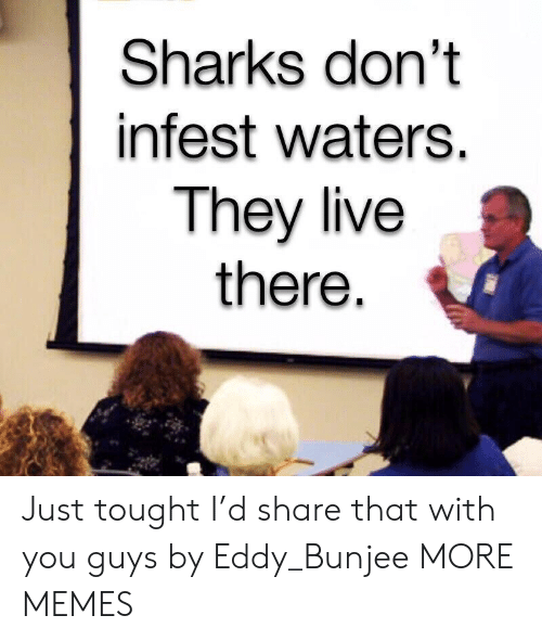 Sharks: Sharks don't  infest waters.  They live  there Just tought I'd share that with you guys by Eddy_Bunjee MORE MEMES