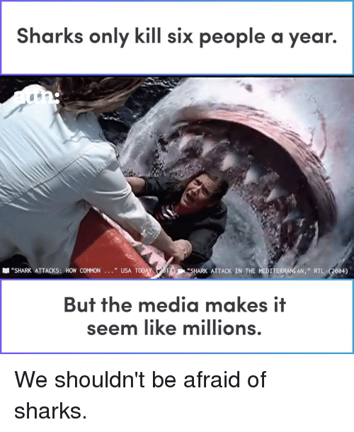 """Memes, Shark, and Common: Sharks only kill six people a year.  """"SHARK ATTACKS: HOW COMMON  """" USA TODAY 201  """"SHARK ATTACK IN THE MEDITERRANEAN,"""" RTL (2004)  But the media makes if  seem like millions We shouldn't be afraid of sharks."""