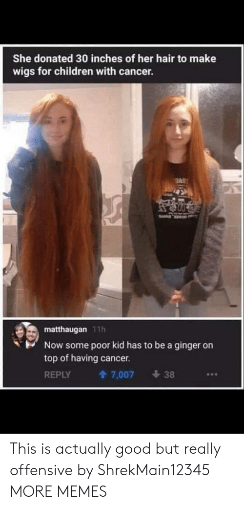 Children, Dank, and Memes: She donated 30 inches of her hair to make  wigs for children with cancer.  AS  matthaugan 11h  Now some poor kid has to be a ginger on  top of having  cancer.  REPLY  7,007  38 This is actually good but really offensive by ShrekMain12345 MORE MEMES