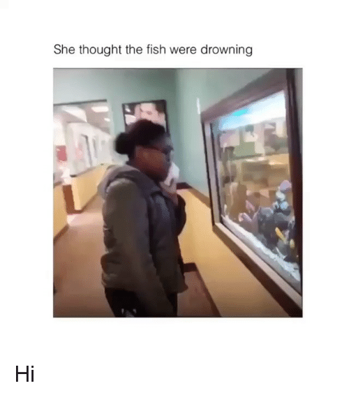 Memes, Fish, and Thought: She thought the fish were drowning Hi