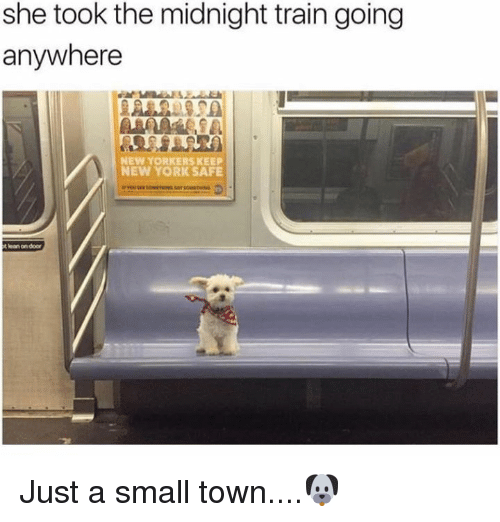 Dank, Lean, and New York: she took the midnight train going  anywhere  NEW YORKERS KEEP  NEW YORK SAFE  t lean on door Just a small town....🐶