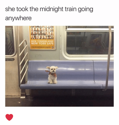 Lean, Memes, and New York: she took the midnight train going  anywhere  NEW YORKERS KEEP  NEW YORK SAFE  lean on door ❤️