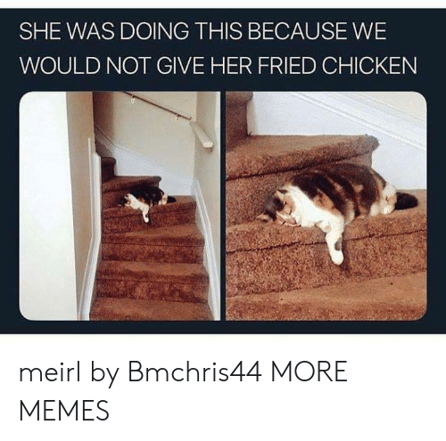 Fried: SHE WAS DOING THIS BECAUSE WE  WOULD NOT GIVE HER FRIED CHICKEN meirl by Bmchris44 MORE MEMES