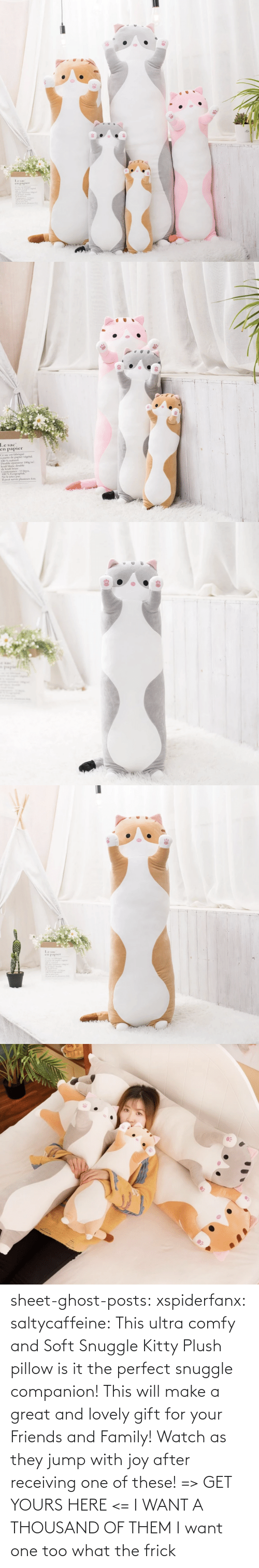 Frick: sheet-ghost-posts: xspiderfanx:  saltycaffeine:  This ultra comfy and Soft Snuggle Kitty Plush pillow is it the perfect snuggle companion! This will make a great and lovely gift for your Friends and Family! Watch as they jump with joy after receiving one of these! => GET YOURS HERE <=    I WANT A THOUSAND OF THEM  I want one too what the frick