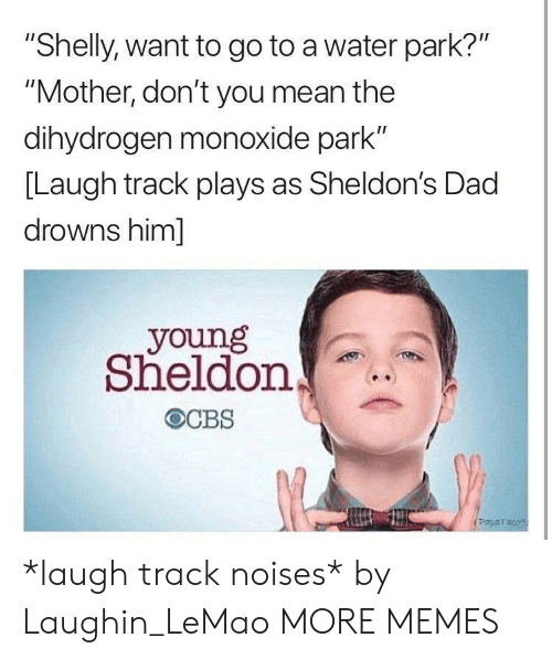 "Dad, Dank, and Memes: ""Shelly, want to go to a water park?""  ""Mother, don't you mean the  dihydrogen monoxide park""  [Laugh track plays as Sheldon's Dad  drowns him]  young  Sheldon  Paparaco *laugh track noises* by Laughin_LeMao MORE MEMES"