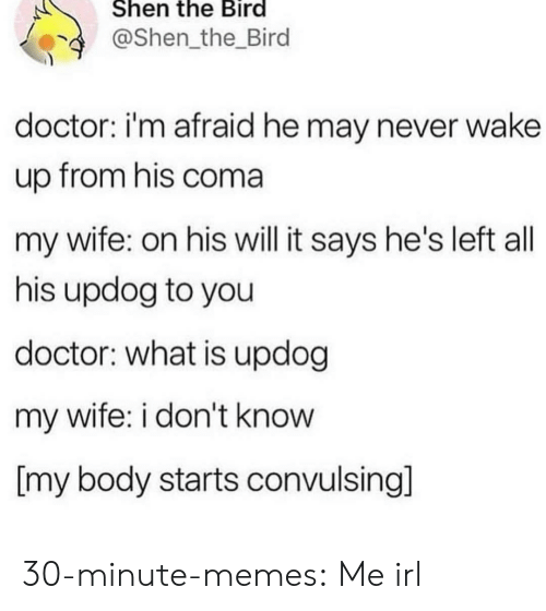 Doctor, Memes, and Tumblr: Shen the Bird  @Shen_the_Bird  doctor: i'm afraid he may never wake  up from his coma  my wife: on his will it says he's left all  his updog to you  doctor: what is updog  my wife: i don't know  [my body starts convulsing] 30-minute-memes:  Me irl