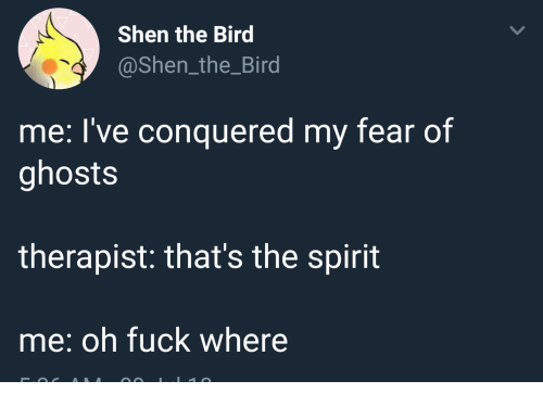Fuck, Spirit, and Fear: Shen the Bird  @Shen_the_Bird  me: I've conquered my fear of  ghosts  therapist: that's the spirit  me: oh fuck where