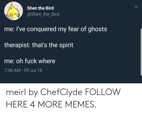 Thats The Spirit: Shen the Bird  @Shen_the_Bird  me: l've conquered my fear of ghosts  therapist: that's the spirit  me: oh fuck where  7:36 AM 09 Jul 18 meirl by ChefClyde FOLLOW HERE 4 MORE MEMES.