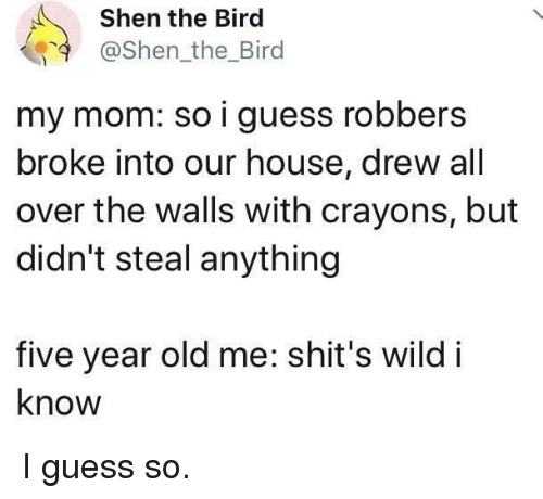 Guess, House, and Wild: Shen the Bird  @Shen_the_Bird  my mom: so i guess robbers  broke into our house, drew all  over the walls with crayons, but  didn't steal anything  five year old me: shit's wild i  know I guess so.