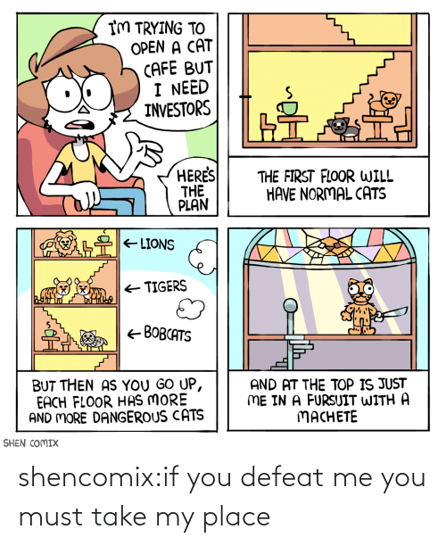 defeat: shencomix:if you defeat me you must take my place