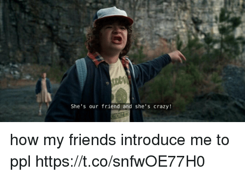 Crazy, Friends, and Girl Memes: She's our friend and she's crazy! how my friends introduce me to ppl https://t.co/snfwOE77H0