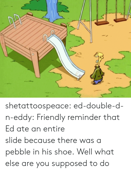 double d: shetattoospeace:  ed-double-d-n-eddy:  Friendly reminder that Ed ate an entire slidebecausethere was a pebble in his shoe.  Well what else are you supposed to do