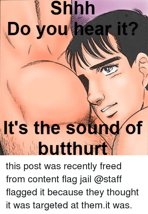Butthurt, Jail, and Content: Shhh  vou hear it?  Do  It's the sound of  butthurt   this post was recently freed from content flag jail  @staff flagged it because they thought it was targeted at them.it was.