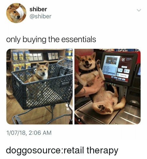 Tumblr, Blog, and Retail: shiber  @shiber  only buying the essentials  1/07/18, 2:06 AM doggosource:retail therapy