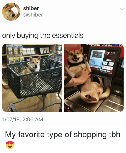 Funny, Shopping, and Tbh: shiber  @shiber  only buying the essentials  1/07/18, 2:06 AM My favorite type of shopping tbh😍