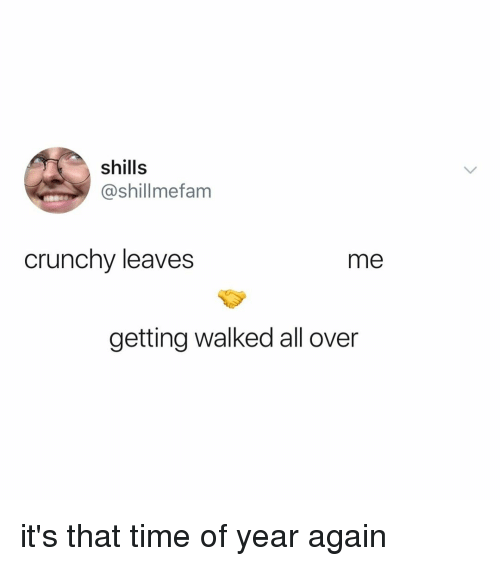 Time, Relatable, and Crunchy: shills  @shillmefam  crunchy leaves  me  getting walked all over it's that time of year again
