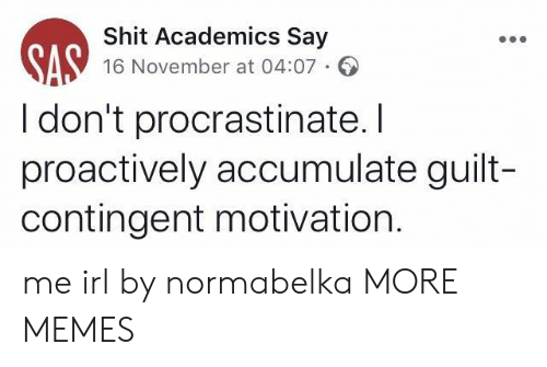 Dank, Memes, and Shit: Shit Academics Say  16 November at 04:07  I don't procrastinate. I  proactively accumulate guilt-  contingent motivation. me irl by normabelka MORE MEMES